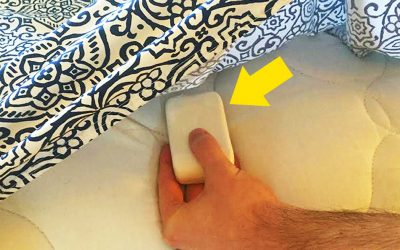 Una pastilla de jabón bajo las sábanas: el mejor compañero por las noches