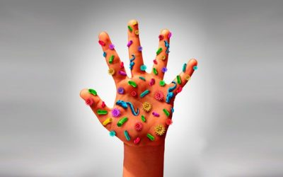 Los 11 objetos con más bacterias que tocas cada día