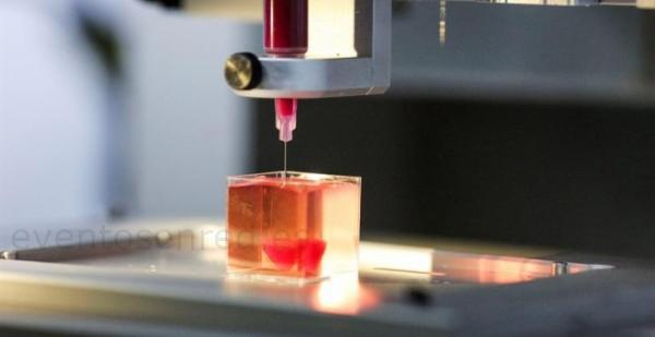 Unos investigadores crean con tejido humano y una impresora 3D un corazón vivo