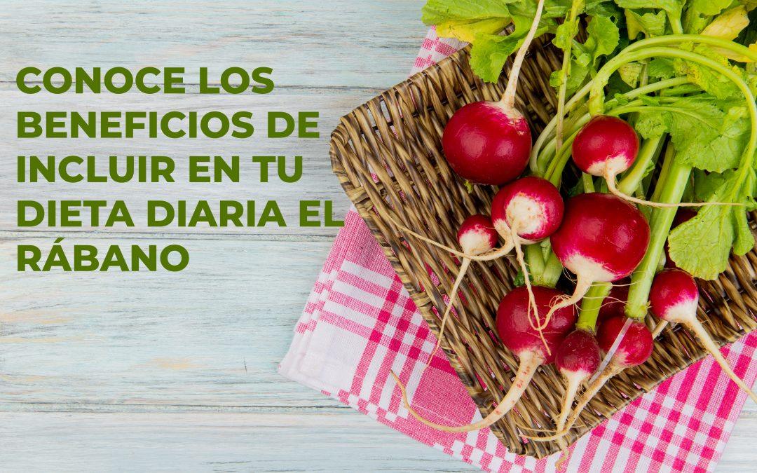 Conoce los beneficios de incluir en tu dieta diaria el rábano, un  superalimento