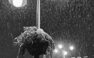 Se buscan las 40 mejores fotos de la nevada en Madrid